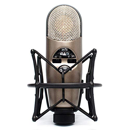 CAD Audio Equitek M179 Microphone for Streaming